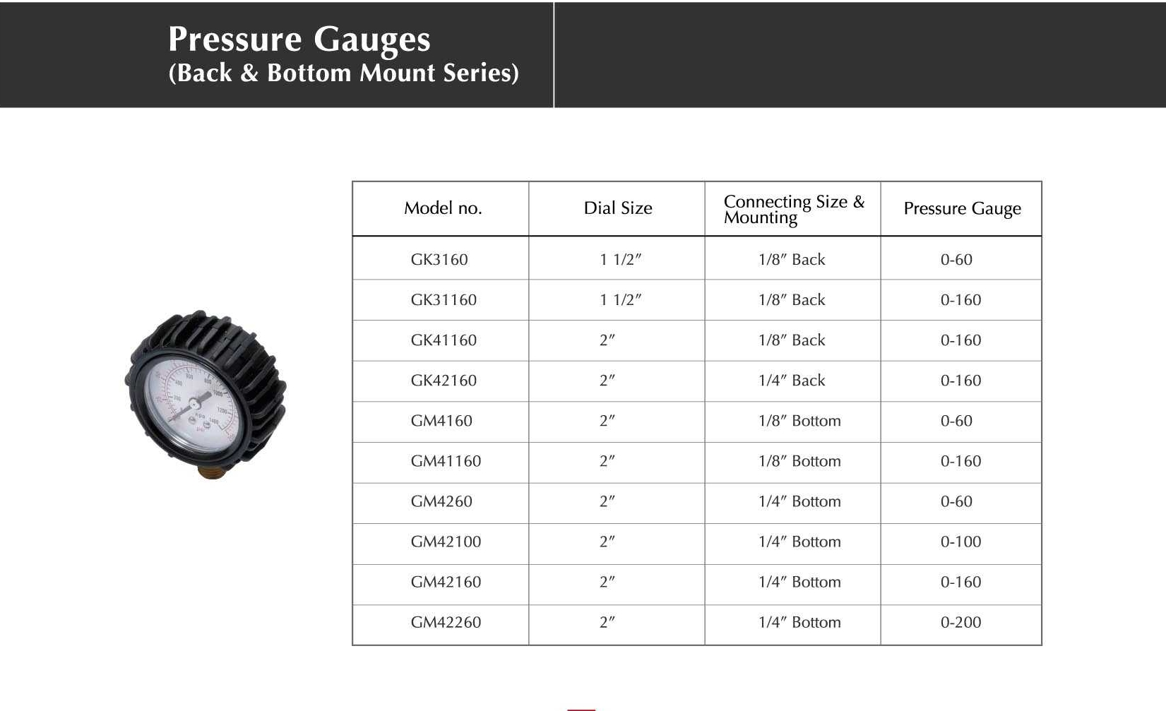 Pressure Gauges (Back & Bottom Mount Series)